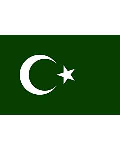 Drapeau: Bosnian Muslim
