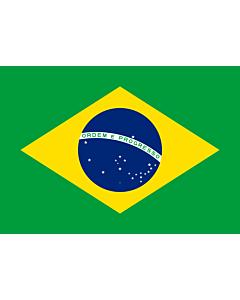 Drapeau: Brazil  1889–1960