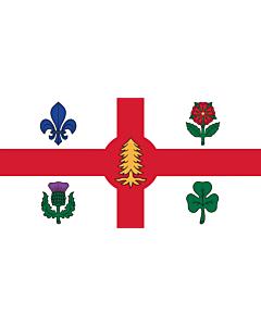 Drapeau: Ville de Montréal, Canada