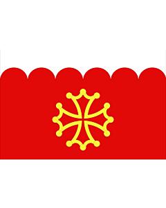 Drapeau: Département du Gard