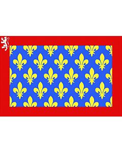Drapeau: Département de la Sarthe