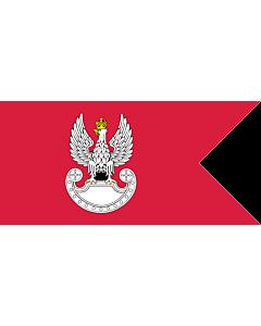 Drapeau: Polish Land Forces | Polish Ground Forces flag. Adopted in 1993 | Wojsk Lądowych. Wprowadzona w 1993